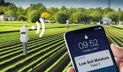 Feldüberwachung in der Landwirtschaft mit HOBOnet